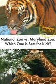 Which_zoo_is_best_1