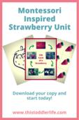 Montessori_activity_series_pins_(9)