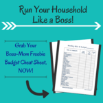 Budget cheat sheet download
