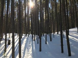 Snow-shoeing in Breckenridge, CO
