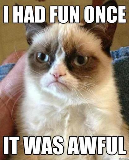 Sopravvivenza dei felines: 10 ragioni per le quali il gatto scontroso è durato in modo da lungamente (ed i suoi 15 minuti sia su)