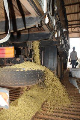 Aprecocidadedas negociações da safra de soja de 2022, surpreende o mercado, pois ocorre15 meses antesdo plantio e18 meses antes da colheita.