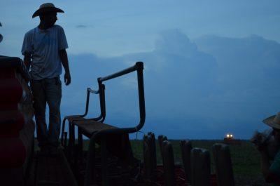 Produtor no Campo