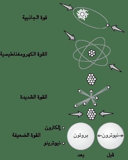 رحلة إلى مركز الكون فيزياء الجسيمات مقدمة قصيرة جدا