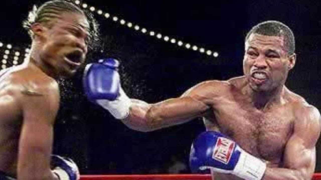 Image result for knockout punch