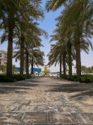 The tropical gardens at The Ritz-Carlton Abu Dhabi