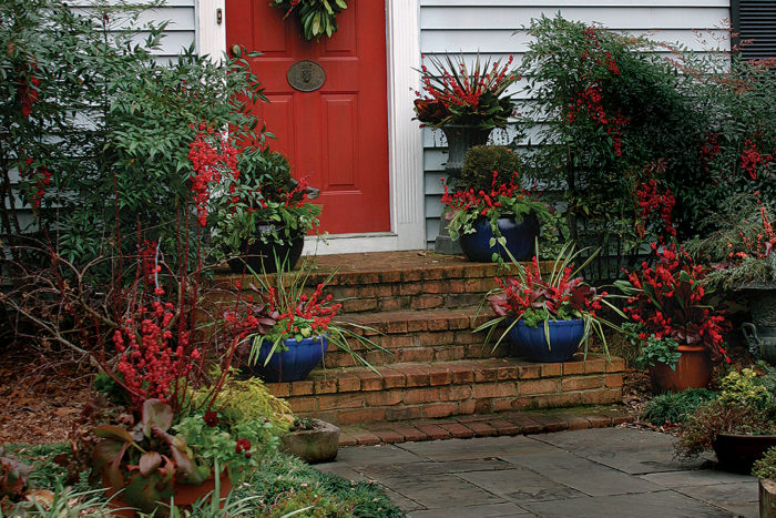 the best winter containers from outdoor