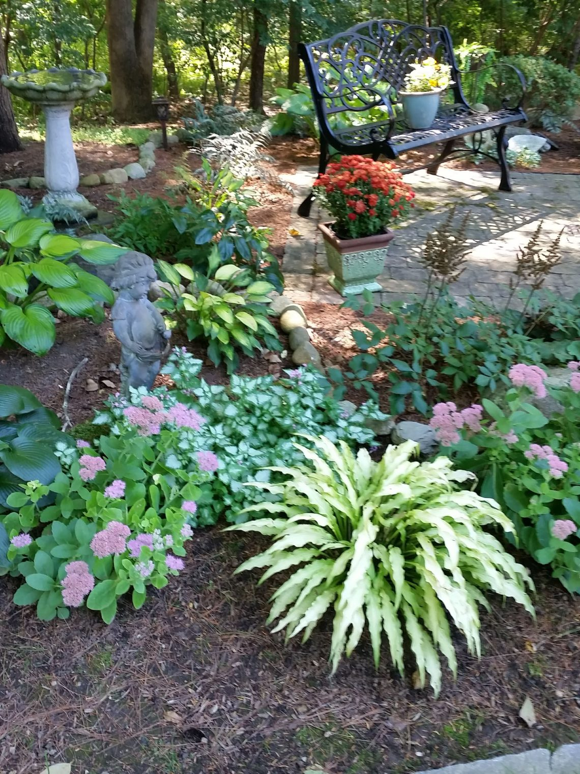 Finding A Garden In A Difficult Time Finegardening