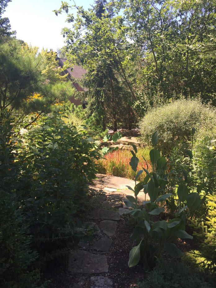 garden path leading to small pond