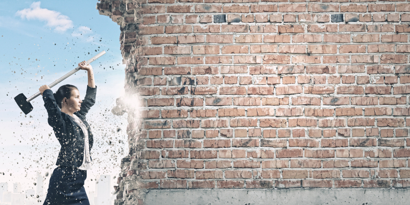 5 Career Change Obstacles You May Confront FlexJobs