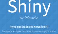 Dockerizing a Shiny App