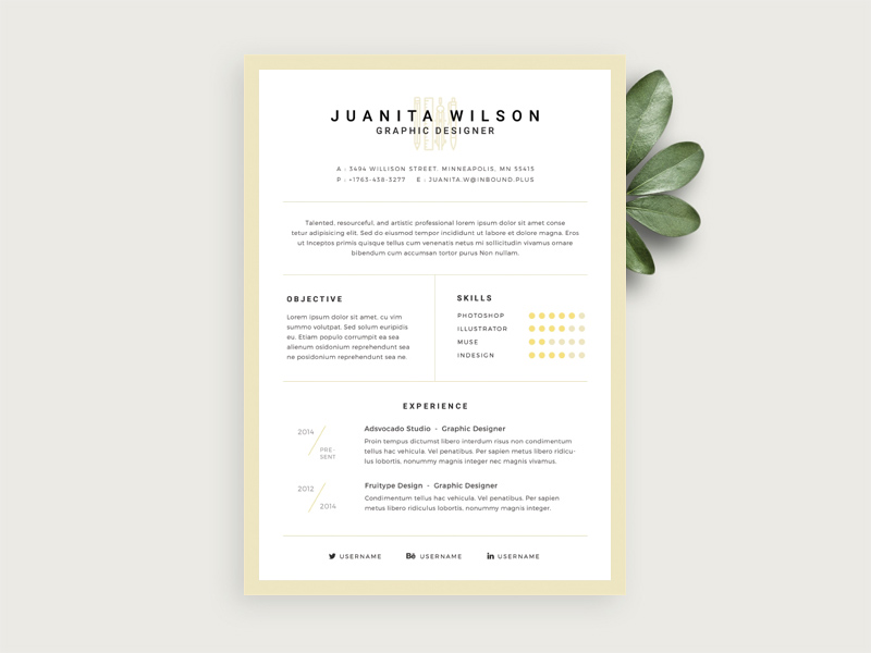 Elegant Resume Template by Vladyslav Tulinovskyi   Freebie Supply Elegant Resume Template by Vladyslav Tulinovskyi
