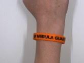 Guardian Wristband