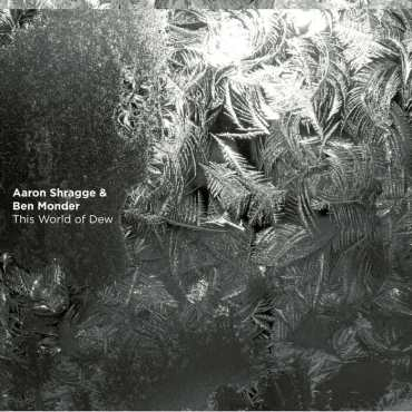 Aaron Shragge/Ben Monder - This World of Dew