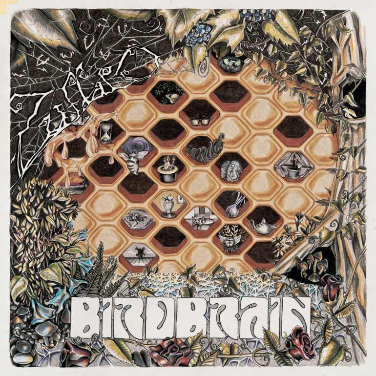Zuffalo - Birdbrain