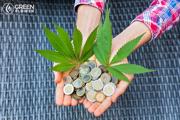 revenue from cannabis