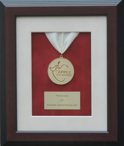 Apple Vacations Platinum Award