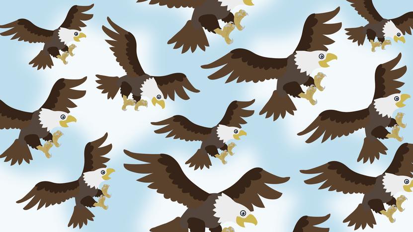When Eagles Come Together: TU/TD