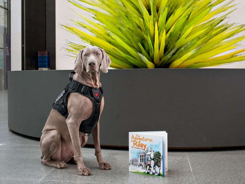 Riley, the MFA's Favorite Security Guard, is the Star of a New Book