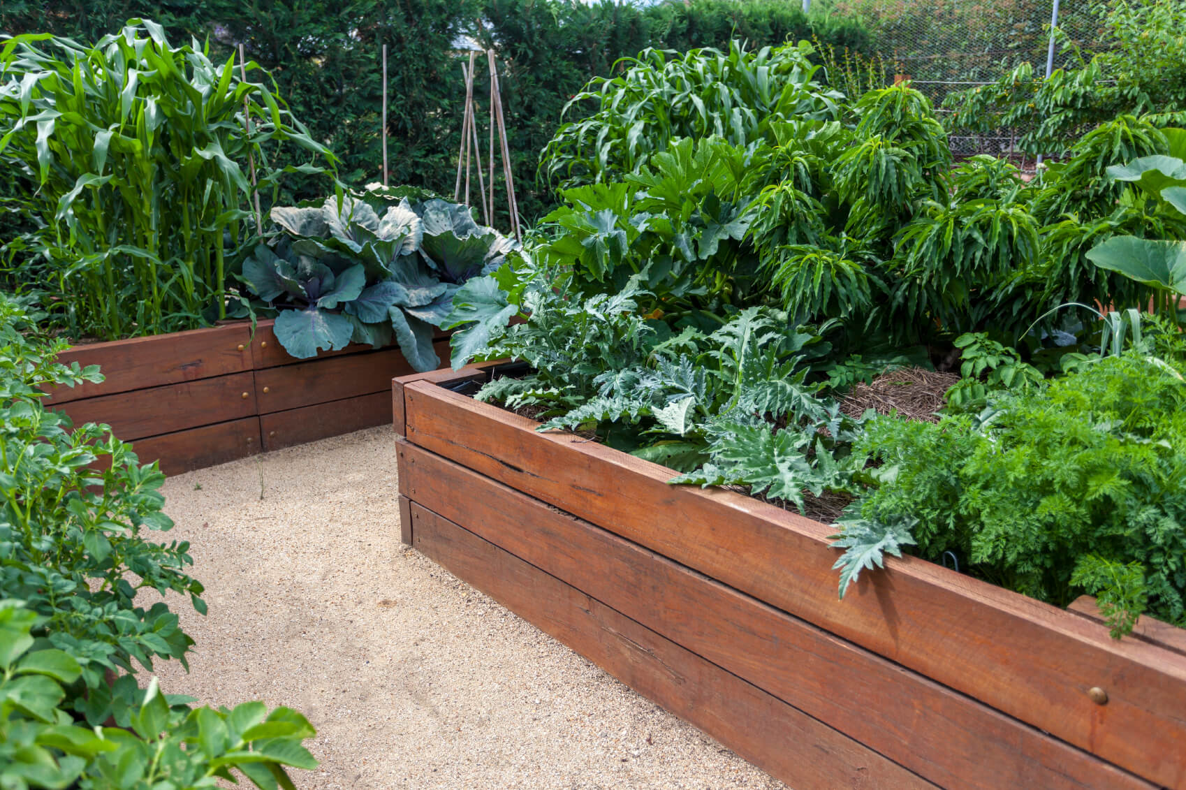 41 Backyard Raised Bed Garden Ideas on Raised Patio Designs  id=83112
