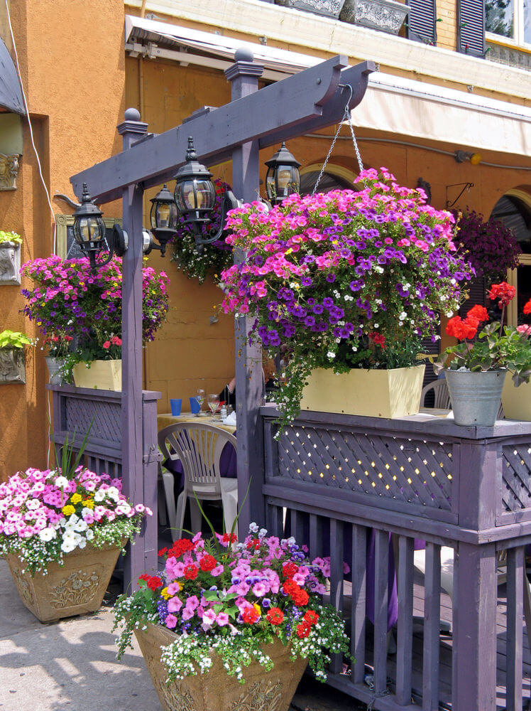 70 Hanging Flower Planter Ideas (PHOTOS and TOP 10) - Home ... on Plant Hanging Ideas  id=57479
