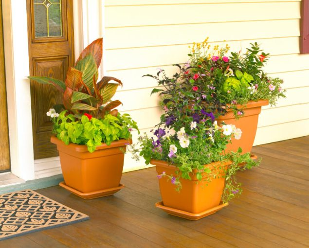 59 Front Door Flower and Plant Ideas Assorted plants look even more decorative when planted all in one pot   These pots arranged