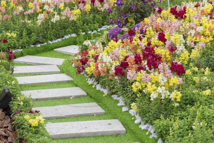 Rectangular pavers mounted on the grass and flooded with colorful blossoms on the corners.