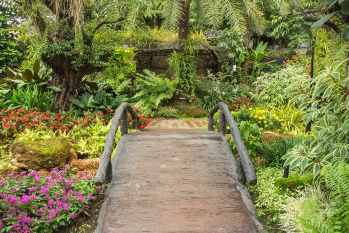 A mini bridge on a pathway is a great idea. It is like having an imaginary lagoon in the garden.
