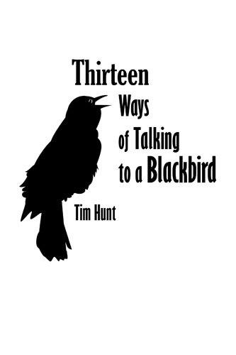 Thirteen Ways of Talking to a Blackbird – Store