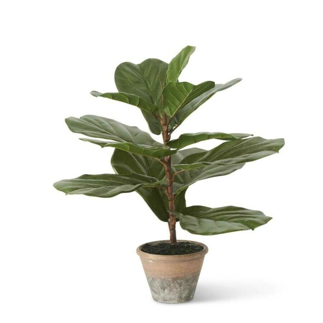 Faux Fiddle Leaf Fig Tree in Clay Pot