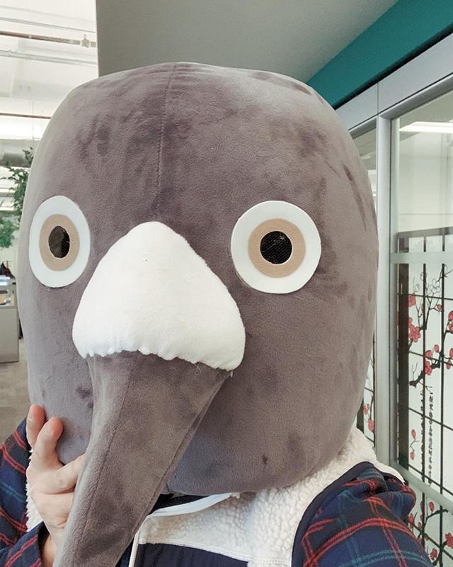 Pigeon Head at Google NYC
