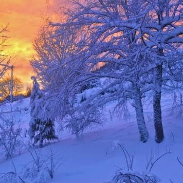 A Winter Snowy Scene - Winter Depression Symptoms