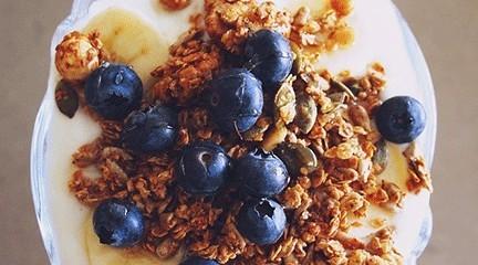 blueberry fibre madness