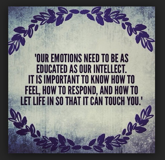 emotions educated for response with the emotional guidance system