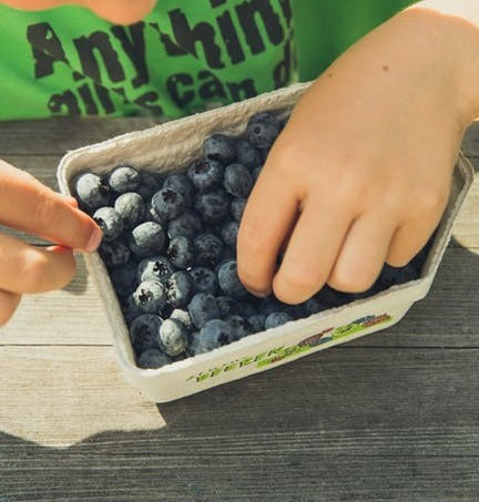 healthy blueberry snack