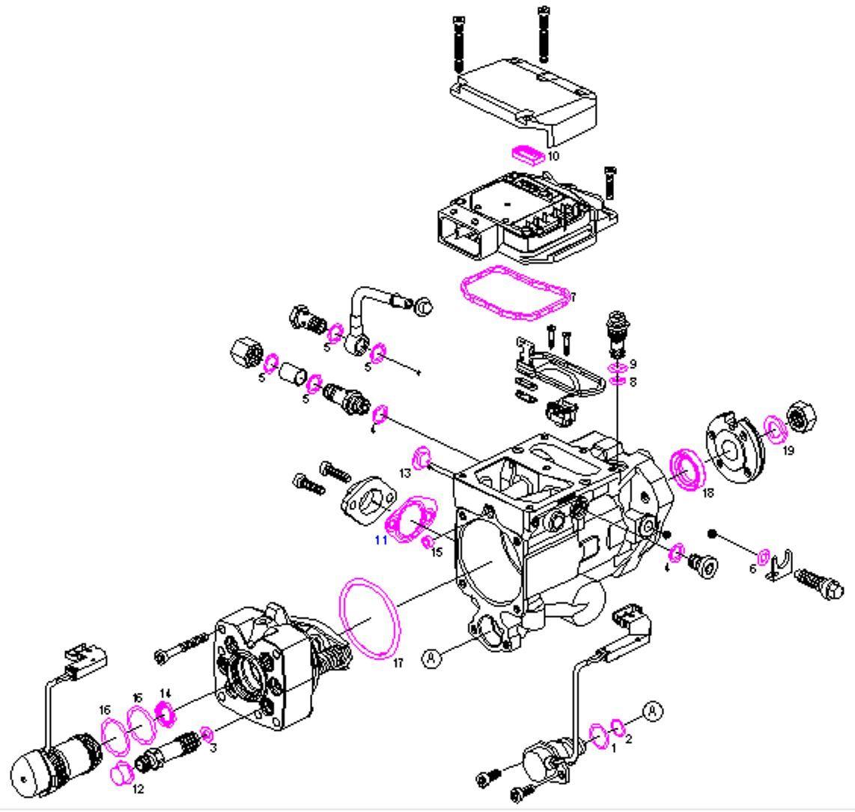 Boschsel Fuel Pump Repair Kit Seals Kit Ford Focus 1