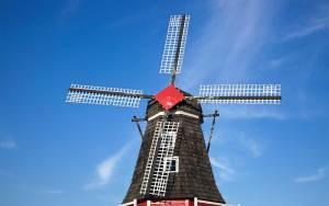 Austauschjahr in Holland 40 Jahre Erfahrung, beste Qualität, beste Preise