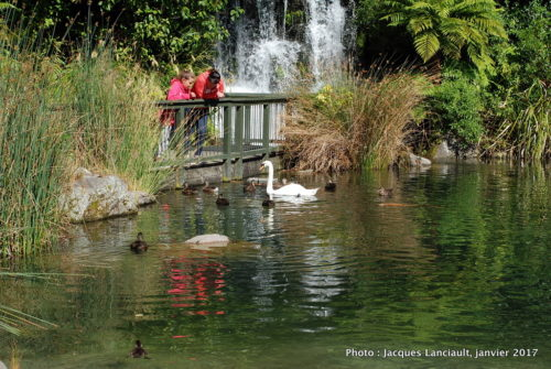 Parc naturel kiwi de Rainbow Springs, Rotorua, Nouvelle-Zélande