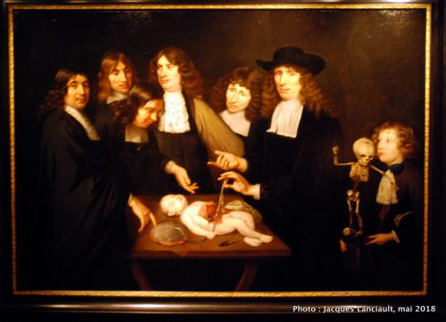 La leçon d'anatomie du docteur Frederik Ruysch, Hermitage Amsterdam, Pays-Bas