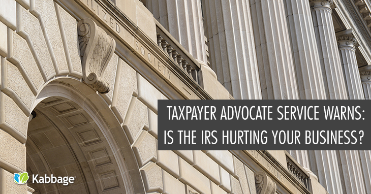 Taxpayer Advocate Service Warns: Is the IRS Hurting Your Business?