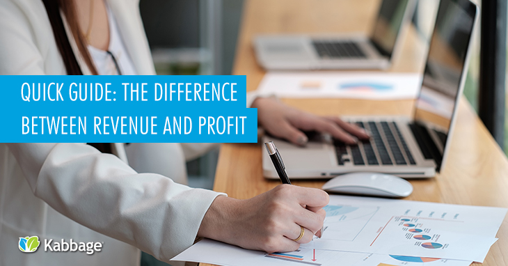 Quick Guide: The Difference Between Revenue and Profit