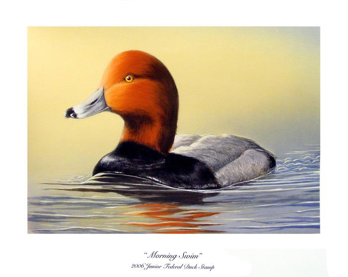 Federal Print Duck 2014