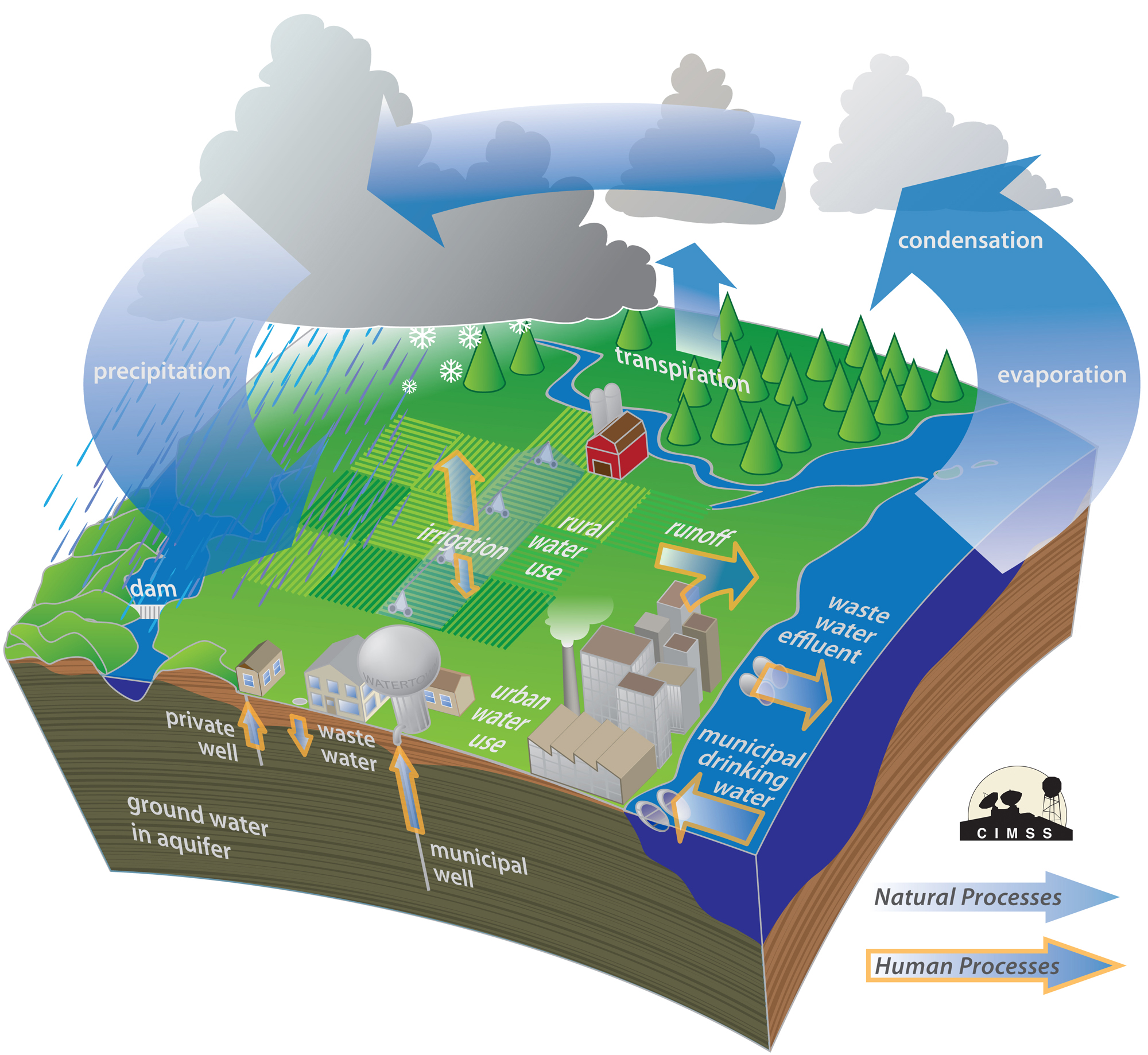 Homework Help Water Cycle What Is The Water Cycle