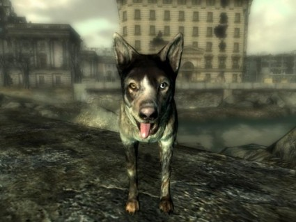 DogmeatFO3