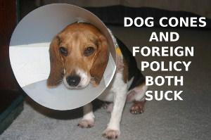 dogCone2