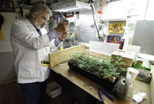 Why I'm Investing in Marijuana