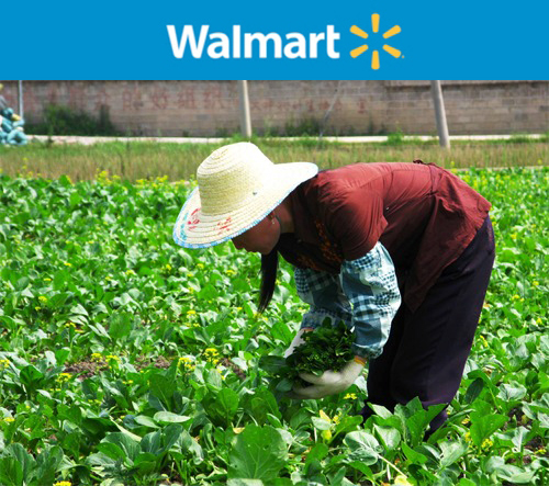 In Defense of Walmart: An Environmentalist's Perspective