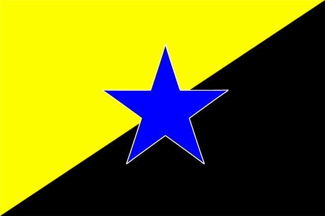 Anarcho-Capitalist-Transhumanist Flag