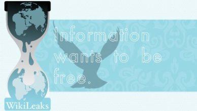 Wikileaks: information wants to be free.