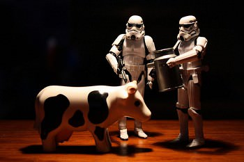 #TotD: Banning Milk